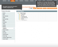 Block access to Magento admin panel per store view