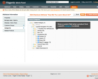 Checkout Fields Manager for Magento