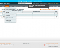 Manage options: Magento Custom Product Options Templates extension